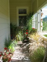My verandah
