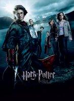 El jodido Harry Potter y sus estúpidos amigos