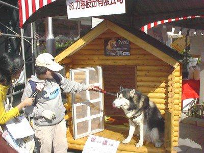 大型狗屋展示