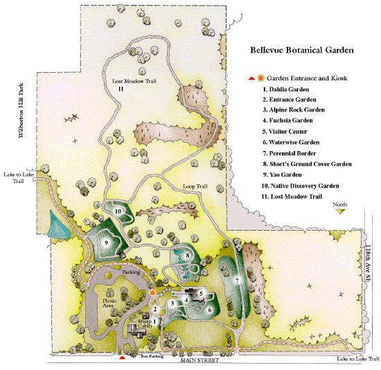 The Bellevue Botanical Garden In Beautiful Pacific Northwest Comprises 36 Acres Of Natural Woodlandeadows And Several Smaller Display Gardens