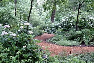 This Delightful Botanical Garden, Occupying 30 Acres In Piedmont Park, Saw  The Addition Of The $4.8 Million 25,000 Square Foot Fuqua Orchid Center And  The ...