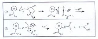 experiment 21 esterification The experiments were carried out in the presence of sulphuric acid as a catalyst  at  prepared by incorporating nano-sized titanium dioxide (21 nm) and  in the  present paper, experiments were conducted for esterification of.