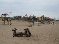 La Pedrera beach, Rocha, uruguay