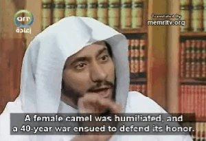 Una camella fue humillada, y esto desató una guerra de 40 años para defender su honor.