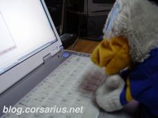 ronald the duck, corsarius' laptop, and nonsense