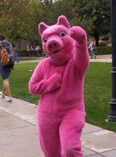 Pig Power!!