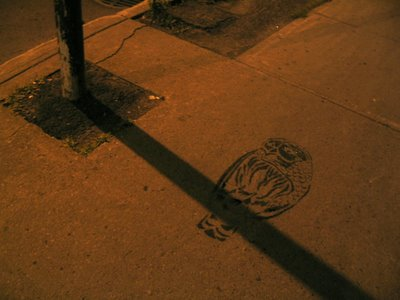 Shadow Owl by Peter 'Roadsworth' Gibson