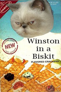 Mmm...Winston flavor!