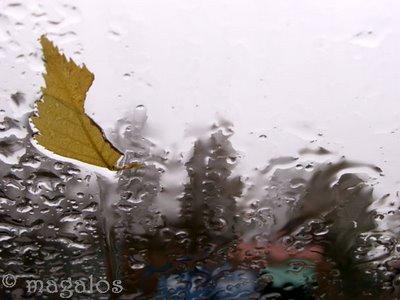 rain at window