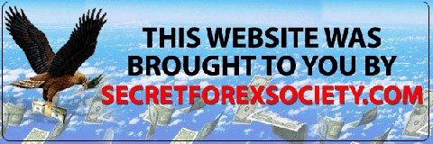 Secrets of a successful forex trader felix homogratus
