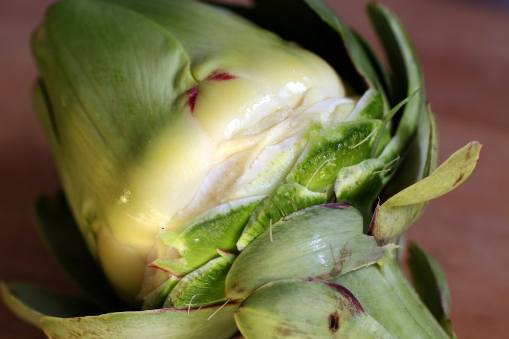 ... picture how to trim how to cut how to prepare a globe artichoke