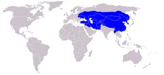 O Império mongol em relação ao mundo
