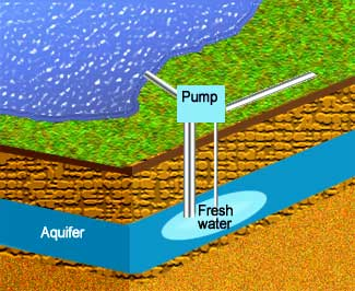 Environmentally Friendy Water Storage