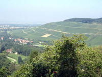 The region of Badenweiler
