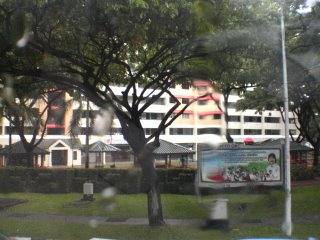 SBS Service 72 Morning Trip At Hougang