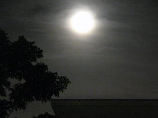 February Moon in its full glory