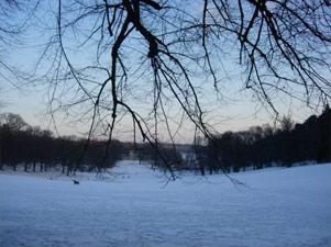 Utsikt från Koppartälten i Hagaparken
