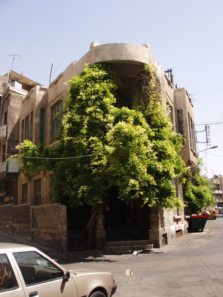 Charming damascus jinn house for The damascus house