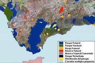 Mapa distribucion pinsapo