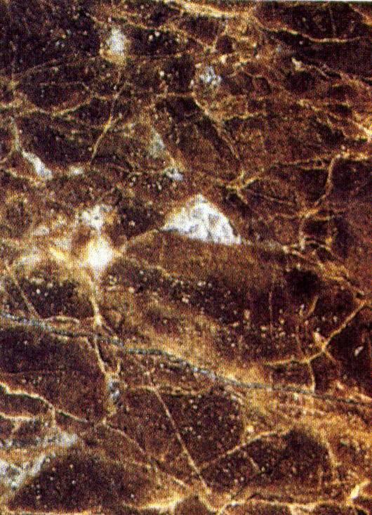 Piedra fotografias marmol marr n emperador oscuro for Marmol marron emperador