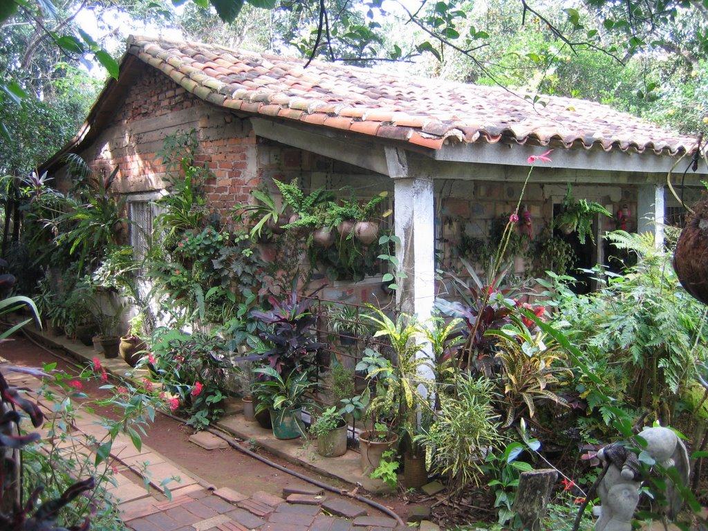 Heavy Petal Vinales Botanical Garden Cuba