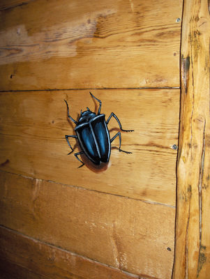 baramix tien 39. Black Bedroom Furniture Sets. Home Design Ideas