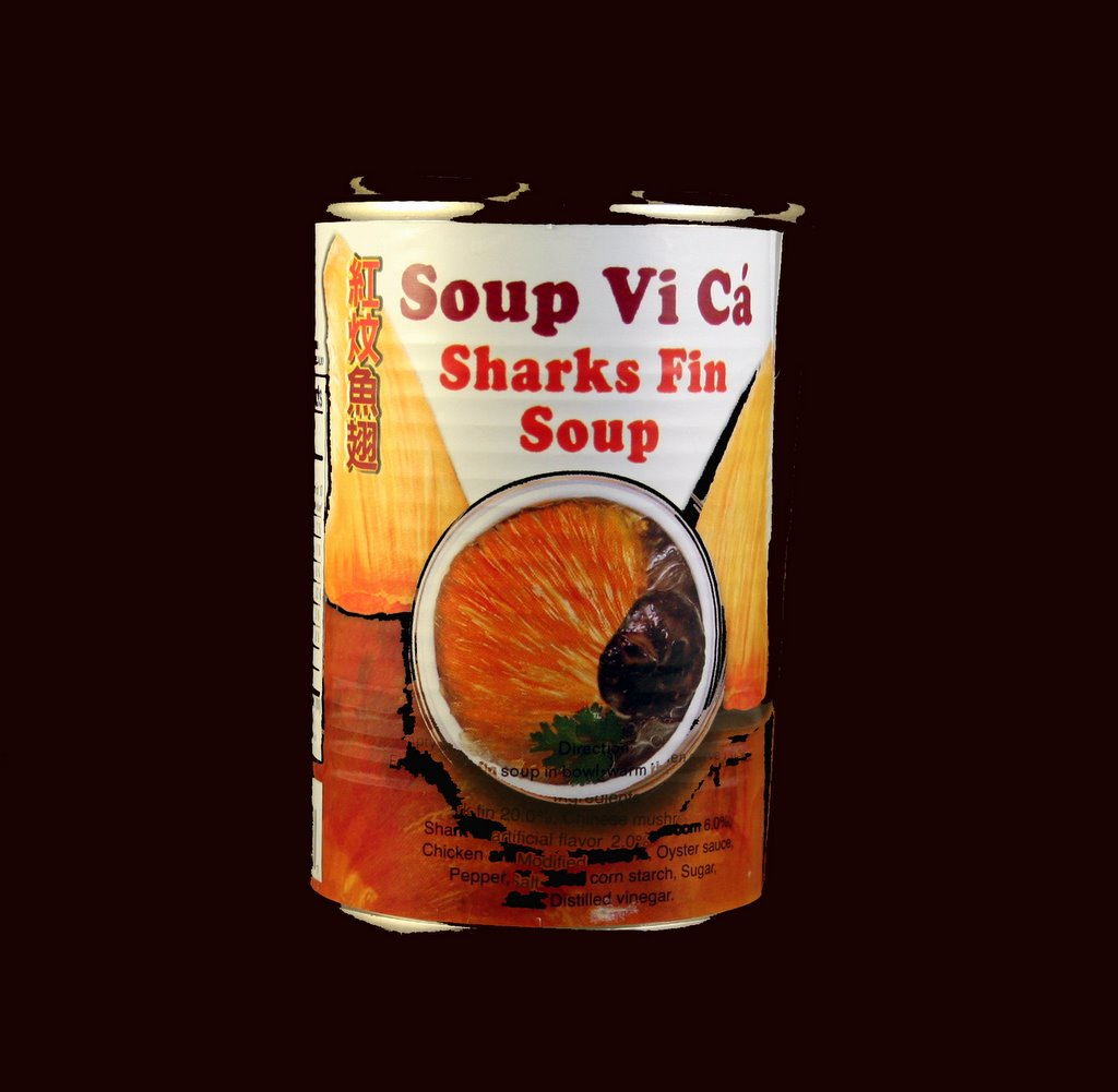 fin soup Shark fin soup (or shark's fin soup) is a traditional soup or stewed dish found in chinese cuisine and vietnamese cuisine the shark fins provide texture, while the.