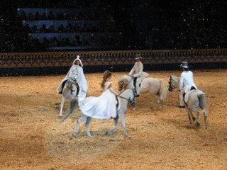 Arabian Nights julshow