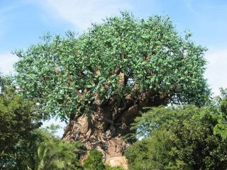 Tree of Life i Animal Kingdom