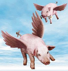 Pigs will fly when the Rangers listen to the RangerPundit