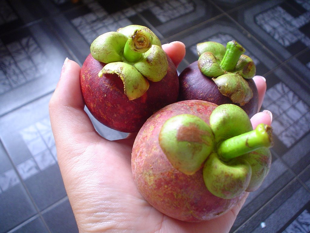 Grenade looking fruit