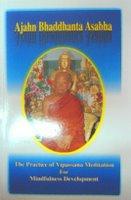 The Practice of Vipassana Meditation for Mindfulness Development
