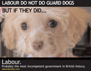 Labour Guard Dogs