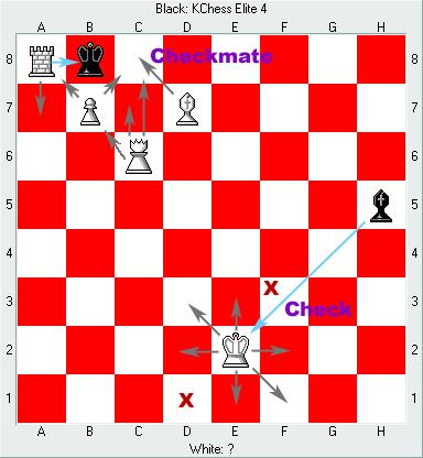 Chess: 체크(Check) / 체크메이트(Checkmate)