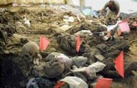 A forensic expert inspects remains during an exhumation at a mass grave site in the village of Kamenica, at the outskirts of the eastern Bosnian town of Zvornik, July 6, 2006. Forensic experts have so far unearthed the remains of 33 complete and 235 incomplete bodies of the victims of the 1995 Srebrenica massacre of about 8,000 Bosniaks (Bosnian Muslims) by the Bosnian Serb forces. REUTERS/ Danilo Krstanovic (BOSNIA AND HERZEGOVINA)