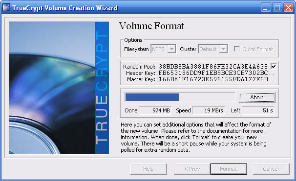 how to format your hard drive in a few minutes After a very very painful few minutes,  extremely high disk activity without any real usage  i would check out your hard drive's performance.