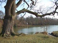Cowdray Park