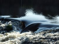 Water over the weir at Dumfries