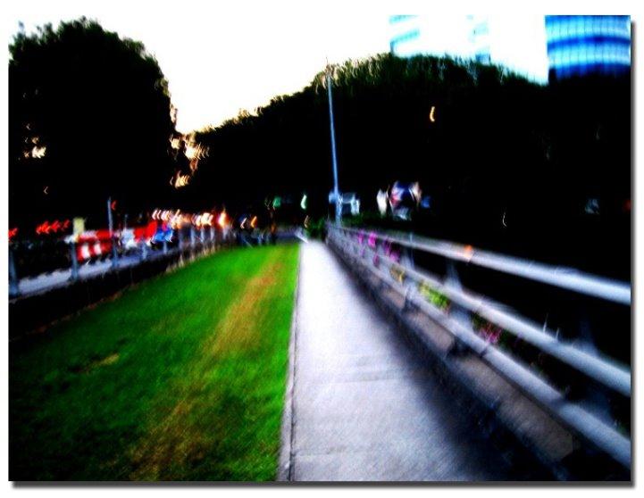 The path I often walked