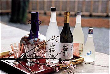 Resultado de imagem para degustar saque no japão