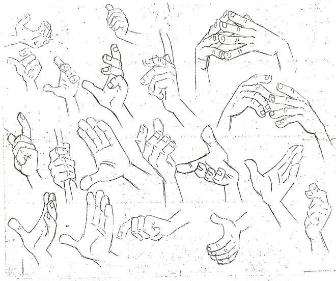 La Nuez Dibujando manos