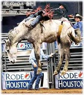 Houston Livestock Show and Rodeo 2006