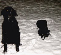 Musta kuva 1 Musta kuva