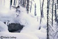 Mark Gallup photographs Ryan Oakden at Chatter Creek