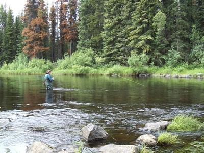 Trout fishing in British Columbia