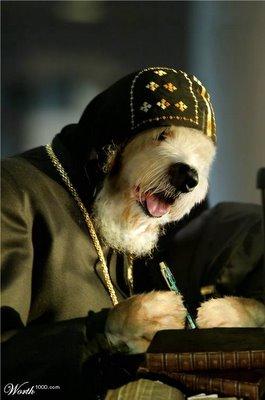Perro blogueando