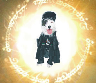 From a time the world fotgot... a dog to rule them all