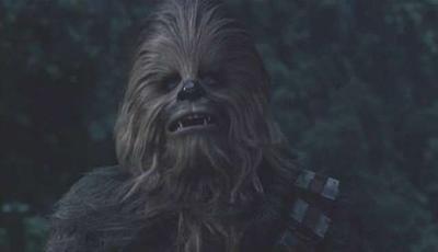 Chewbacca se despide mis amigos y yo