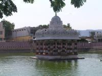 A common site