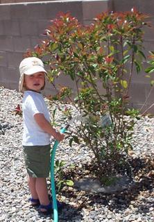 E watering plants